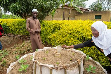 Growing Vegetables in the Dry Season