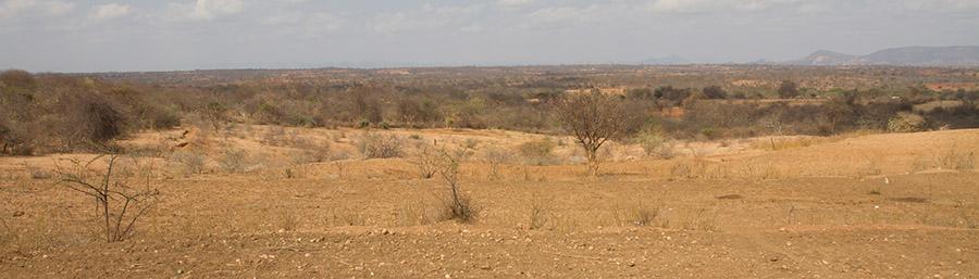 Drought in Kenya