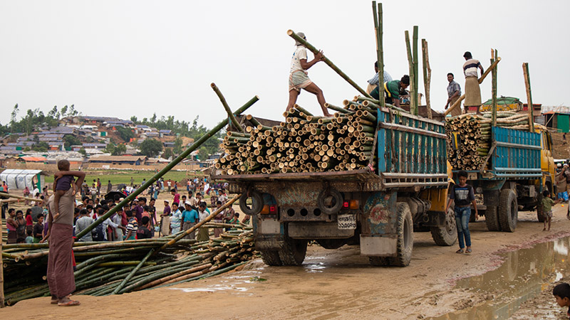 Workers unloading bamboo poles for shelter construction.