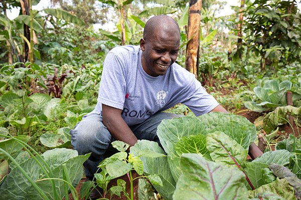 Obed in his Kitchen Garden